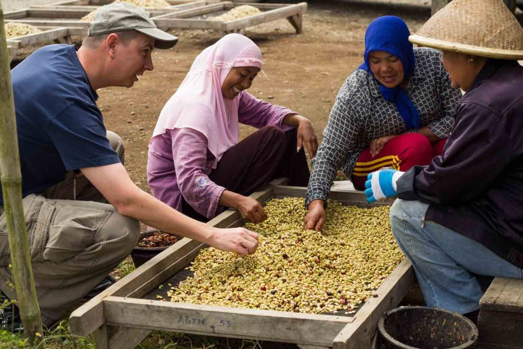 Sorting Sumatran Coffee